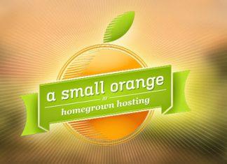 vps chất lượng cao A Small Orange