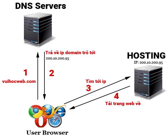 trỏ domain về hosting vuihocweb.com