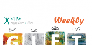 Chia sẻ theme WordPress bản quyền