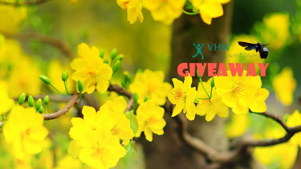 VHW Giveaways 2017 - Free Resources cho Blog chuyên nghiệp!