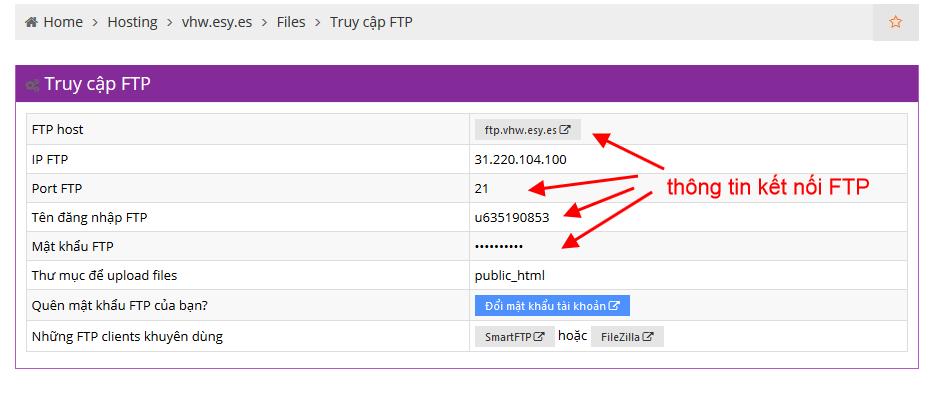 Thông tin kết nối FTP Free Hosting của Hostinger