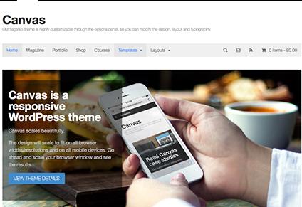 thương hiệu theme WordPress tốt nhất