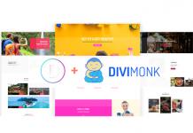 Divi-và-Divi-Monk---Bộ-đôi-hoàn-hảo-cho-mọi-WordPress-sites