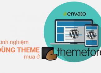 Kinh nghiệm dùng theme WordPress từ themeforest
