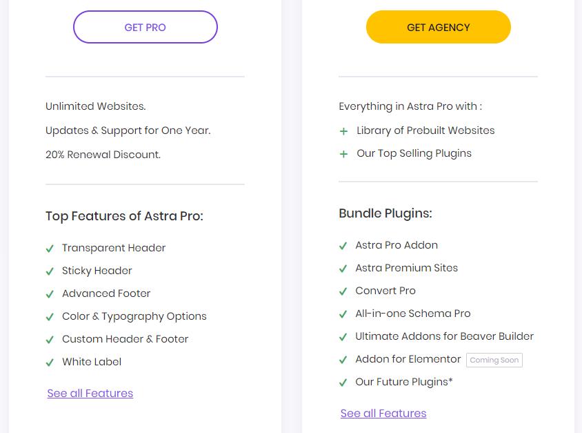 Astra Agency là bộ công cụ cực mạnh cho thiết kế website WordPress