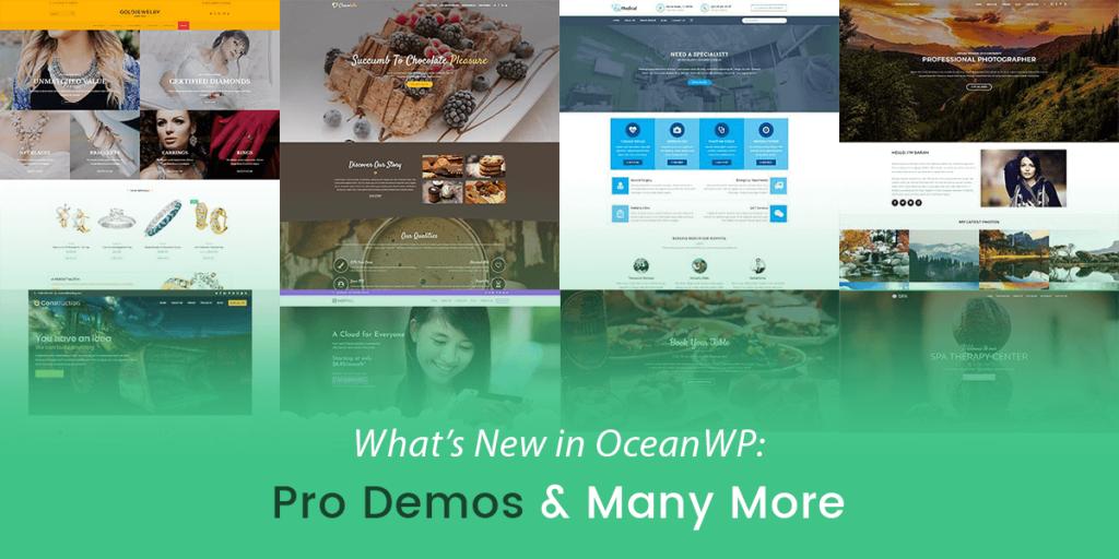 OceanWP đang phát triển cực nhanh