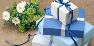 Quà tặng năm mới VHW tặng theme WPZoom