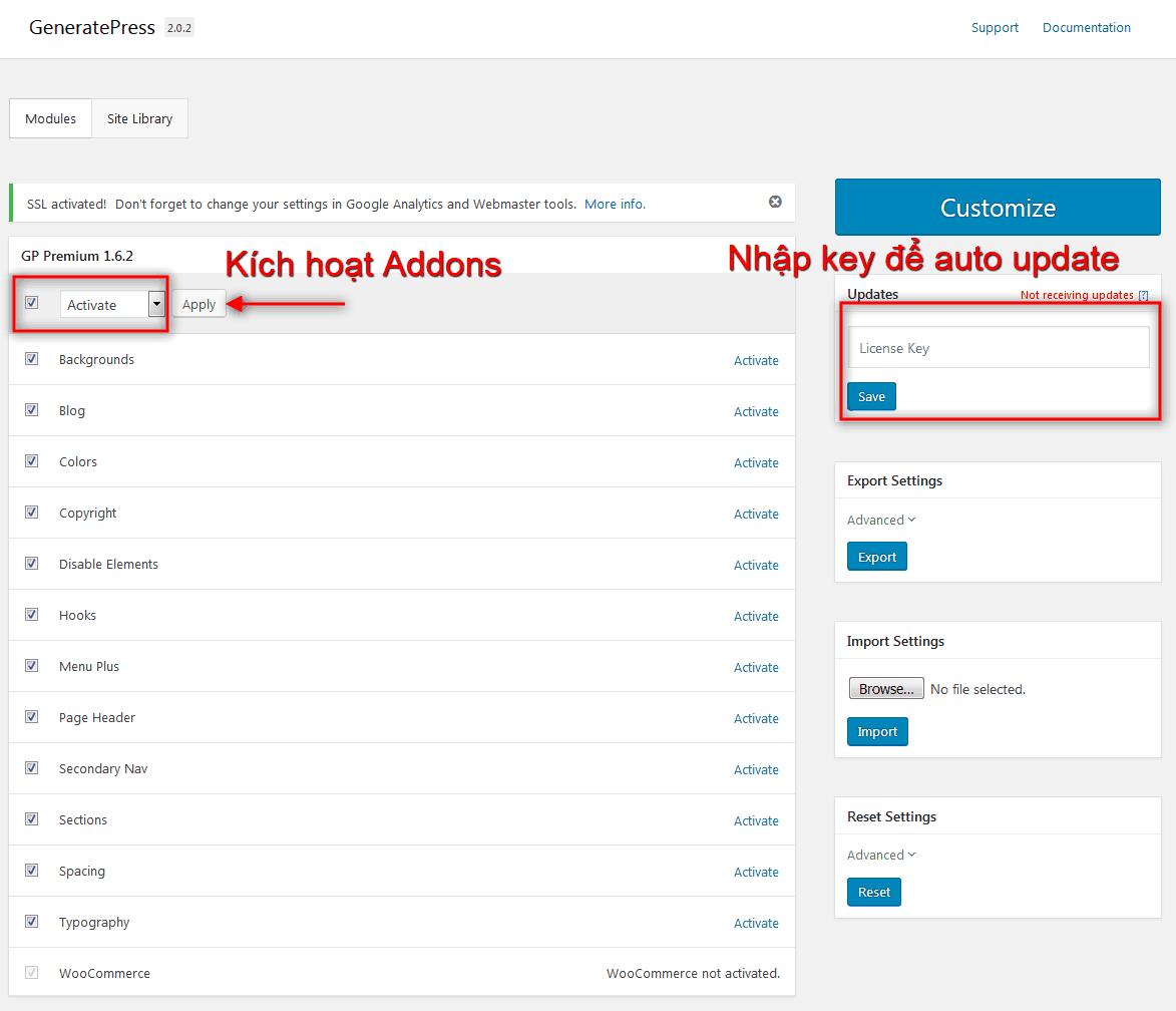 Kích hoạt Addons GeneratePress Premium