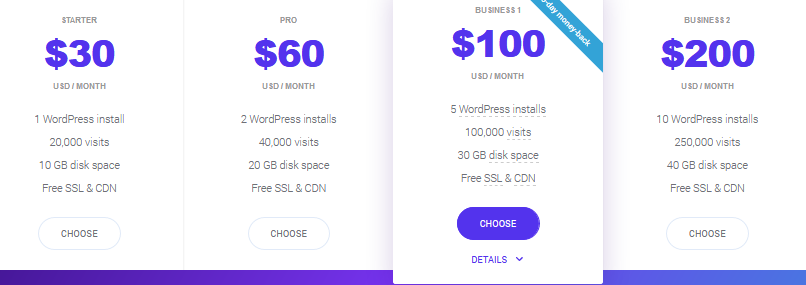 Kinsta Hosting price